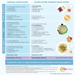 Choline-Focused Meal Plans