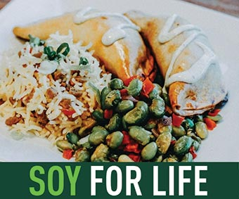 Soy for life image