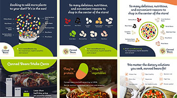 Canned Bean Infographics