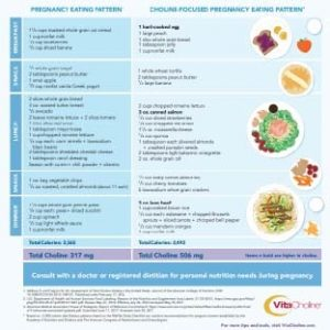 Choline Focused Meal Plans 75_75
